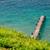 gaivotas · pier · água · paisagem - foto stock © mahout