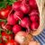 taze · sebze · sepet · yaprak · meyve · sağlık · arka · plan - stok fotoğraf © maisicon
