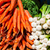 fresh carrots and onions stock photo © maisicon