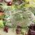 marinált · disznóhús · váll · különböző · gyógynövények · kész - stock fotó © Makse