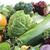 érett · friss · zöldségek · közelkép · levél · kert · nyár - stock fotó © Makse