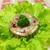 hús · zselé · falatozó · saláta · levél · fehér - stock fotó © Makse