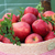 rosso · mele · basket · cresciuto · alimentare - foto d'archivio © Makse