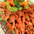 調理済みの · カニ · クローズアップ · 水平な · 写真 - ストックフォト © makse