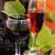 twee · bril · wijn · stilleven · wijnfles · wijnglas - stockfoto © mallivan
