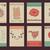 ビッグ · セット · フローラル · グラフィックデザイン · 要素 · グラフィック - ストックフォト © mamziolzi