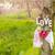 rózsaszín · babacipők · kislány · cipők · szövet · szalag - stock fotó © manaemedia