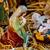 Gesù · agnello · vetrate · Pasqua · vetro - foto d'archivio © manaemedia