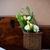 virágcsokor · citromsárga · virágok · virág · tavasz · természet - stock fotó © manera