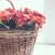 rózsák · kosár · asztal · virágcsokor · ablak · háttérvilágítás - stock fotó © manera