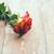 friss · piros · rózsa · öreg · fa · deszka · klasszikus · tavasz - stock fotó © manera