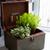 домой · садоводства · растений · подоконник · современных · интерьер · кухни - Сток-фото © manera