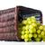 плетеный · корзины · свежие · фрукты · полный · изолированный · белый - Сток-фото © manera