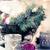 różowy · christmas · dekoracje · ozdoby · pasiasty - zdjęcia stock © manera