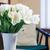 design · d'intérieur · modernes · salon · détail · rouge · canapé - photo stock © manera
