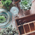 Haus · Pflanzen · grünen · alten · Holz · Feld - stock foto © manera