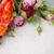 multicolored roses on linen fabric stock photo © manera
