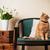 diseno · interior · moderna · salón · detalle · rojo · sofá - foto stock © manera