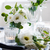 summer wedding table decoration stock photo © manera