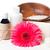 productos · spa · cuerpo · atención · higiene · blanco - foto stock © manera
