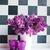 ваза · очки · весны · букет · стены - Сток-фото © manera