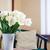 biały · tulipany · bukiet · wnętrza · pokój - zdjęcia stock © manera