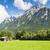 testtartás · Alpok · hegyek · fű · hegy - stock fotó © manfredxy