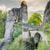 medieval bastei bridge in saxony stock photo © manfredxy