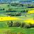 dorp · landschap · meer · Europa - stockfoto © manfredxy