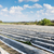 asperges · veld · groeiend · plastic · plantaardige · lijn - stockfoto © manfredxy