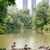 セントラル·パーク · マンハッタン · ニューヨーク市 · 空 · 水 · 春 - ストックフォト © marco_rubino