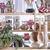 kuchnia · półka · krajowy · roślin · puli · ściany - zdjęcia stock © marcoguidiph