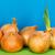 úmido · verde · cebolas · sessão - foto stock © marekusz