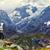 természetjáró · hegy · nő · alpesi · ösvény · sport - stock fotó © maridav