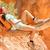 turysta · kanion · turystyka · kobieta · patrząc - zdjęcia stock © maridav