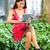 小さな · ビジネス女性 · 作業 · タブレット · 女性 · セクシー - ストックフォト © maridav