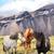 icelandic horses on iceland nature landscape stock photo © maridav