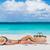 tengerpart · pihenés · kalap · nő · alszik · nap - stock fotó © maridav