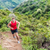 trail runner running in mountain nature landscape stock photo © maridav