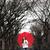 vrouw · lopen · winter · park · gelukkig · brunette - stockfoto © maridav