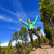 hiking woman reaching summit cheering in forest stock photo © maridav