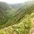 hiking people on hawaii waihee ridge trail maui stock photo © maridav