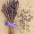 lawendy · herb · kwiat · kwiaty · odizolowany · biały - zdjęcia stock © marilyna
