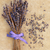 лаванды · трава · цветок · цветы · изолированный · белый - Сток-фото © marilyna