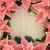 poinsettia flower border stock photo © marilyna