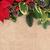 virág · keret · virágok · csillámlás · absztrakt · csecsebecse - stock fotó © marilyna