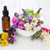 naturopathic flowers and herbs stock photo © marilyna