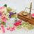 leczniczy · kwiaty · zioła · używany - zdjęcia stock © marilyna