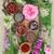 ラベンダー · 女性 · 花 · ハーブ · 花 - ストックフォト © marilyna