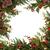 kış · flora · Noel · geleneksel · sınır · sarmaşık - stok fotoğraf © marilyna